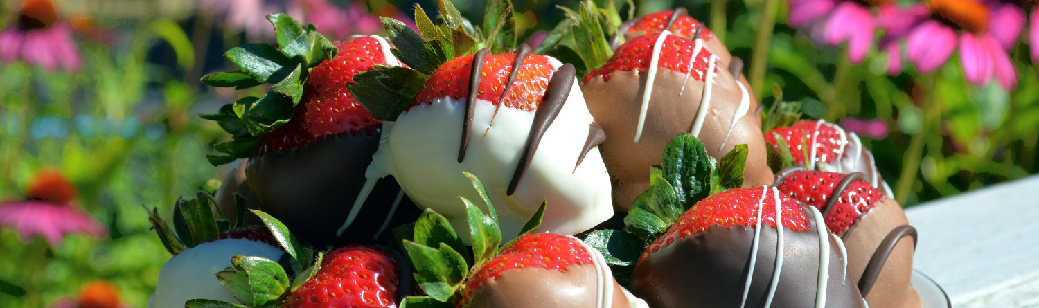 chocolate strawberries in summer